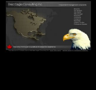 Bald Eagle Consulting